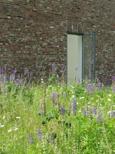 Open Door (Foto: Peter Müssen)